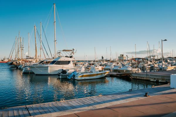 Paseo marítimo, puerto y lonja del pescado Con niños