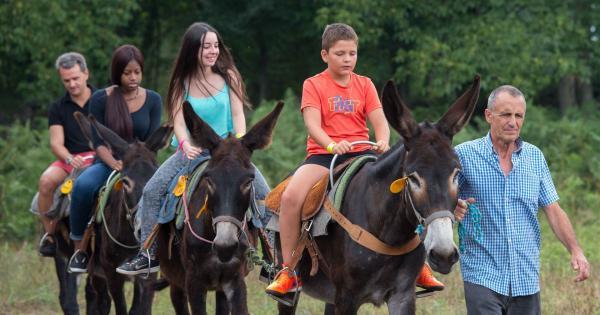 En burro y a caballo en Les Preses Con niños