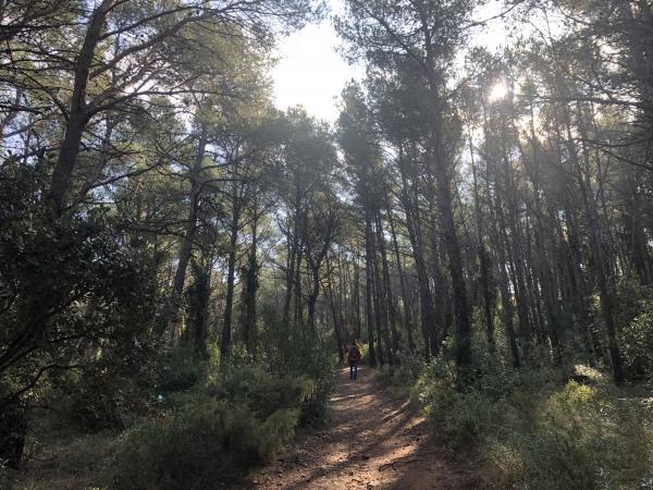 Un día en Figuerola del Camp con niños