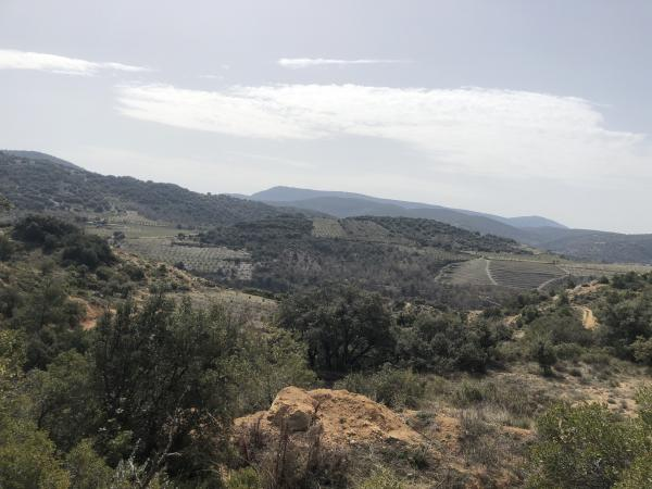 Cova dels calaixos, a Vilanova de Prades. Foto: ESCAPADA AMB NENS