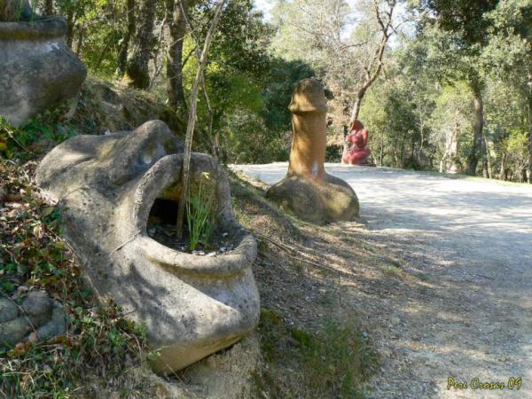 Bosc de Can Ginebreda Con niños