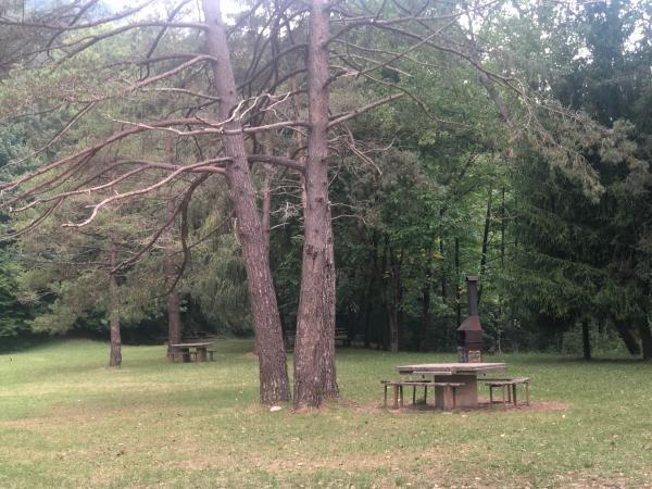 Área de pícnic de la Fuent de Querol Con niños