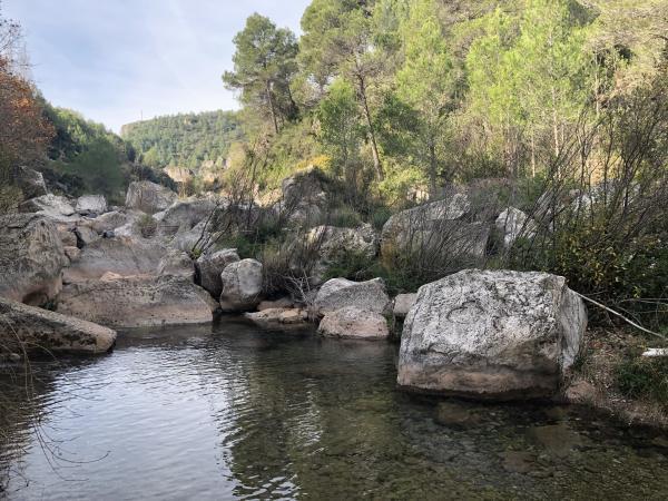 Toll del Molí de la Font Gran, La Riba. Foto: ESCAPADAAMBNENS.COM