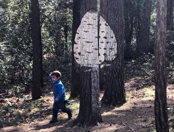Bosc Pintat de Poblet. Foto: ESCAPADA AMB NENS
