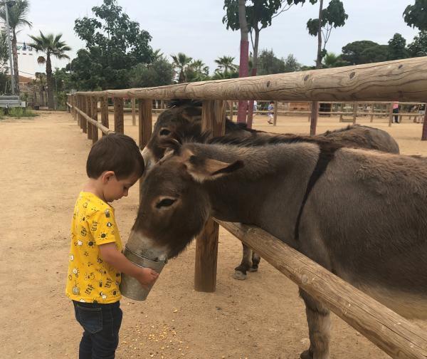 Aventures amb animals a Tarragona amb nens