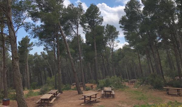 Zona de lleure forestal del Montmell amb nens